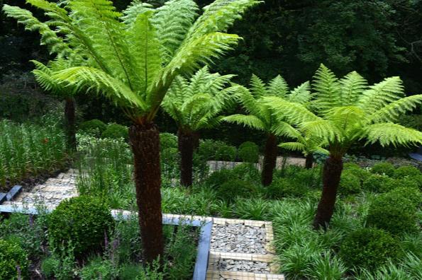 David Keegan Garden Design