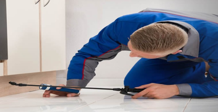 CleanedRite Pest Control Services