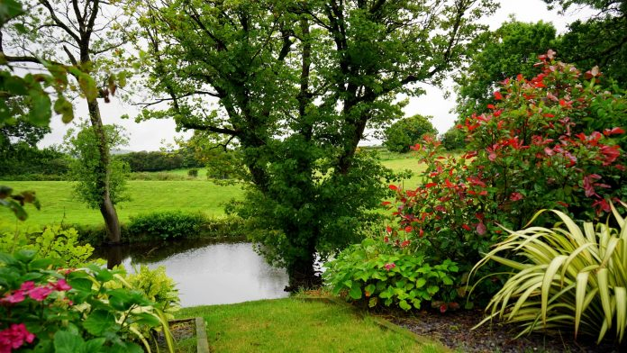 5 Best Landscaping Companies in Glasgow