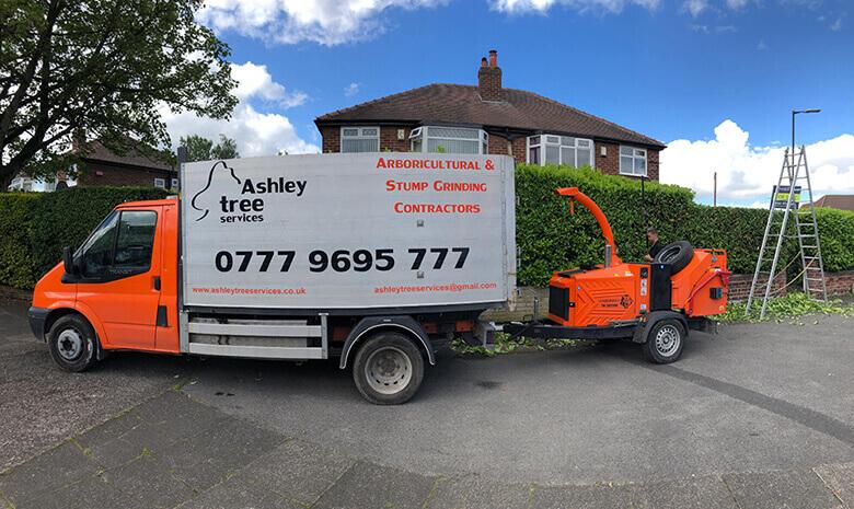 Ashley Tree Services
