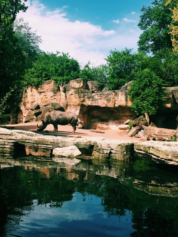 5 Best Aquariums/Zoos in Liverpool