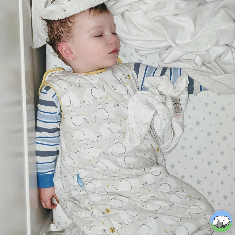 Sleepy Lambs Sleep Consulting: Alexis Halley Reade