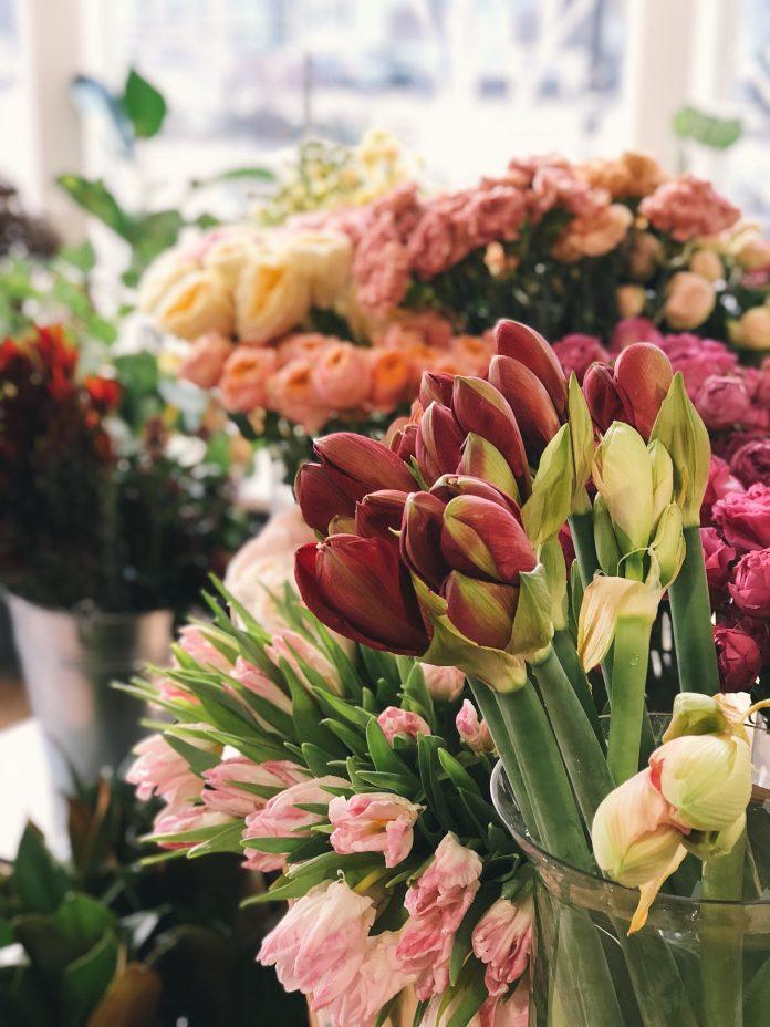 5 Best Florists in Sheffield